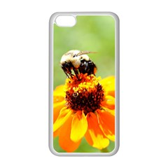 Bee on a Flower Apple iPhone 5C Seamless Case (White)