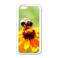 Bee On A Flower Apple Iphone 6 White Enamel Case