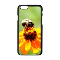 Bee on a Flower Apple iPhone 6 Black Enamel Case