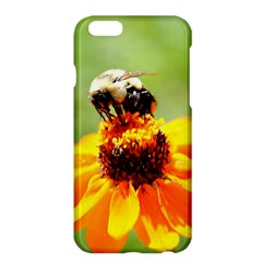 Bee On A Flower Apple Iphone 6 Plus Hardshell Case