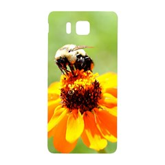 Bee On A Flower Samsung Galaxy Alpha Hardshell Back Case