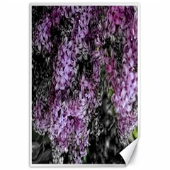 Lilacs Fade To Black And White Canvas 24  X 36  (unframed)