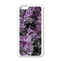 Lilacs Fade To Black And White Apple Iphone 6 White Enamel Case