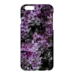 Lilacs Fade to Black and White Apple iPhone 6 Plus Hardshell Case