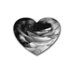 Light Black And White Rose Drink Coasters (heart)