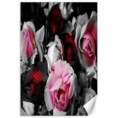 Black And White Roses Canvas 20  X 30  (unframed)