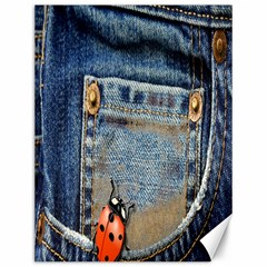 Blue Jean Lady Bug Canvas 12  X 16  (unframed)