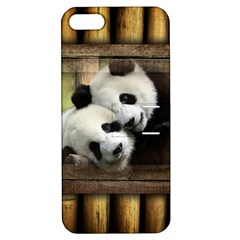 Panda Love Apple Iphone 5 Hardshell Case With Stand