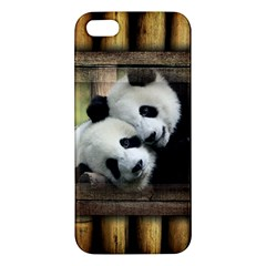 Panda Love Iphone 5s Premium Hardshell Case