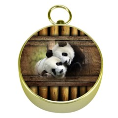 Panda Love Gold Compass