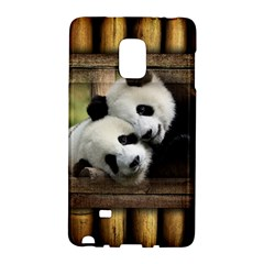 Panda Love Samsung Galaxy Note Edge Hardshell Case