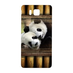Panda Love Samsung Galaxy Alpha Hardshell Back Case
