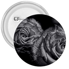 Black And White Tea Roses 3  Button