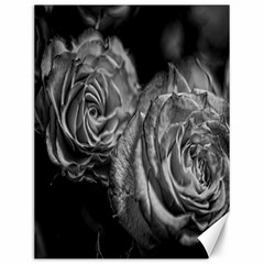 Black and White Tea Roses Canvas 12  x 16  (Unframed)