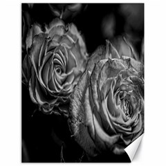 Black And White Tea Roses Canvas 18  X 24  (unframed)