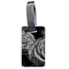 Black And White Tea Roses Luggage Tag (one Side)