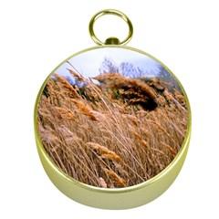 Blowing prairie Grass Gold Compass