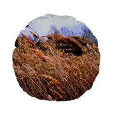 Blowing prairie Grass 15  Premium Flano Round Cushion