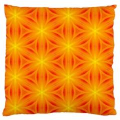 Cute Pretty Elegant Pattern Large Flano Cushion Case (One Side)