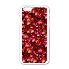 Warm Floral Collage Print Apple iPhone 6 White Enamel Case