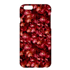 Warm Floral Collage Print Apple iPhone 6 Plus Hardshell Case