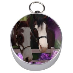Two Horses Silver Compass