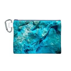 Turquoise Canvas Cosmetic Bag (Medium)