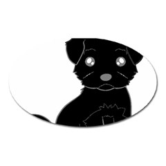 Affenpinscher Cartoon Magnet (Oval)
