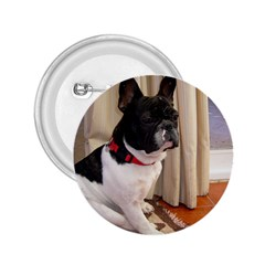 Sitting 3 French Bulldog 2.25  Button