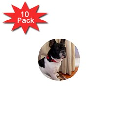 Sitting 3 French Bulldog 1  Mini Button Magnet (10 pack)