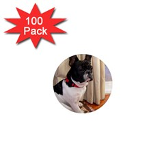 Sitting 3 French Bulldog 1  Mini Button Magnet (100 pack)
