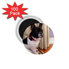Sitting 3 French Bulldog 1.75  Button Magnet (100 pack)
