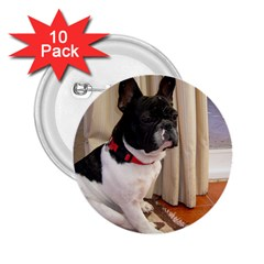 Sitting 3 French Bulldog 2.25  Button (10 pack)