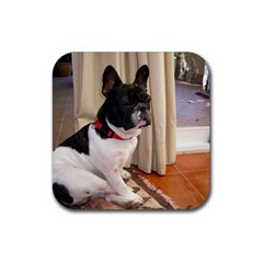 Sitting 3 French Bulldog Drink Coaster (Square)