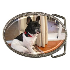 Sitting 3 French Bulldog Belt Buckle (Oval)
