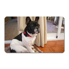 Sitting 3 French Bulldog Magnet (Rectangular)