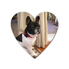 Sitting 3 French Bulldog Magnet (Heart)