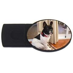 Sitting 3 French Bulldog 2GB USB Flash Drive (Oval)