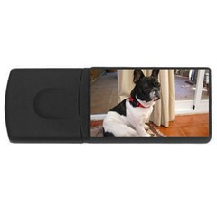 Sitting 3 French Bulldog 2GB USB Flash Drive (Rectangle)