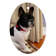 Sitting 3 French Bulldog Oval Ornament (Two Sides)