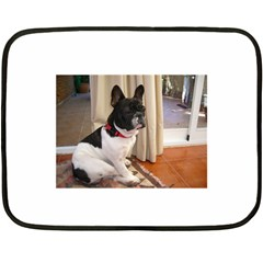 Sitting 3 French Bulldog Mini Fleece Blanket (Two Sided)