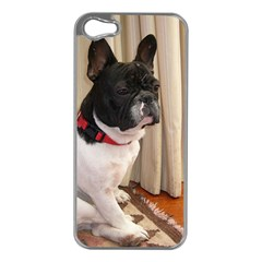 Sitting 3 French Bulldog Apple iPhone 5 Case (Silver)