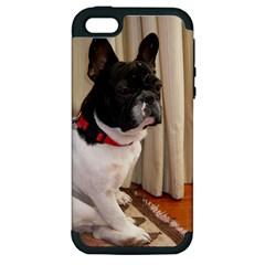 Sitting 3 French Bulldog Apple iPhone 5 Hardshell Case (PC+Silicone)