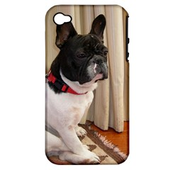 Sitting 3 French Bulldog Apple iPhone 4/4S Hardshell Case (PC+Silicone)
