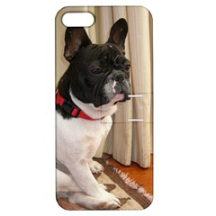 Sitting 3 French Bulldog Apple iPhone 5 Hardshell Case with Stand