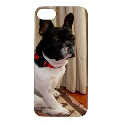 Sitting 3 French Bulldog Apple iPhone 5S Hardshell Case