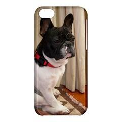 Sitting 3 French Bulldog Apple iPhone 5C Hardshell Case