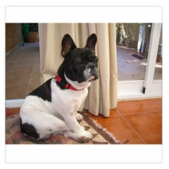 Sitting 3 French Bulldog Satin Scarf (Square)