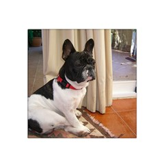 Sitting 3 French Bulldog Satin Bandana Scarf