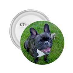 Sitting 2 French Bulldog 2.25  Button